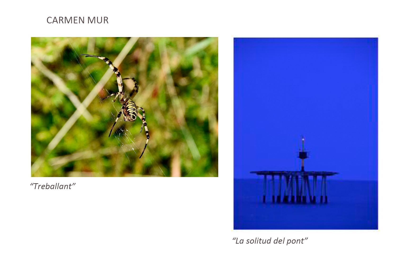 Carmen_Mur
