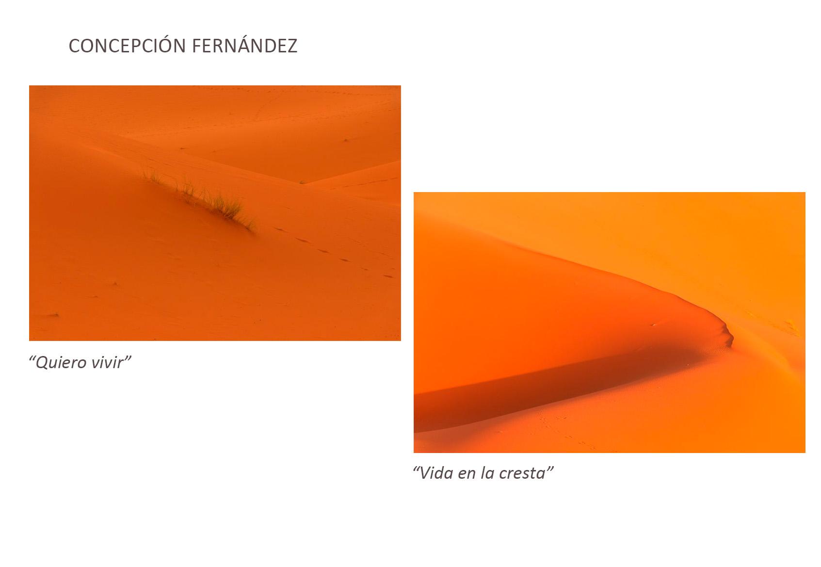 Concepcion_Fernandez