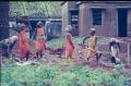 4.12-1984-Orissa-109-Jeypore-paaroja-woman-wor0001