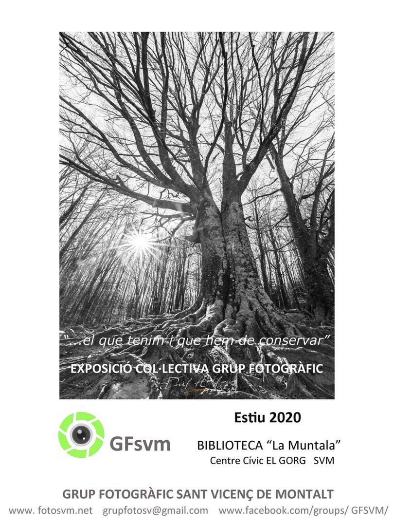 cartell-expo-biblio2020-SVMw-1-810x1080.jpg