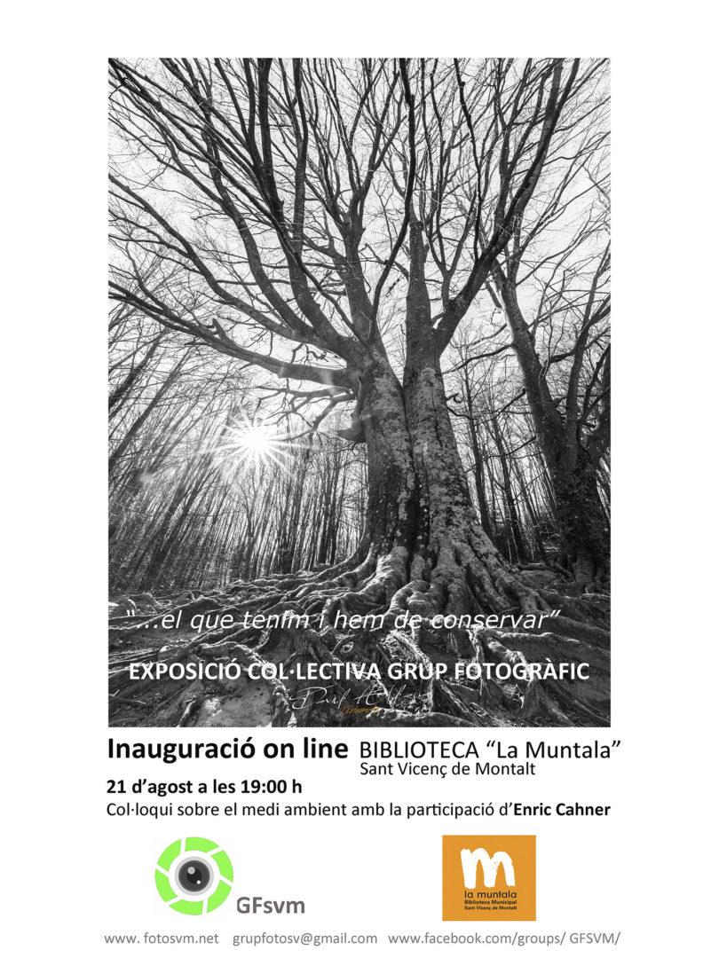 inauguració_expo-biblio2020-SVM-810x1080.jpg