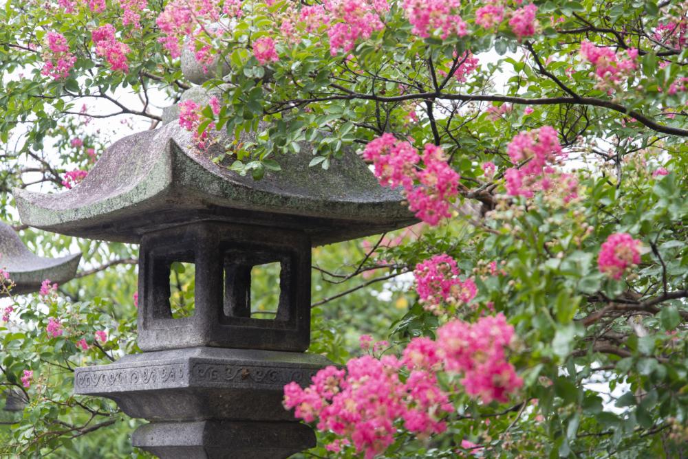 Temple Kiyomizu-dera. Kyoto