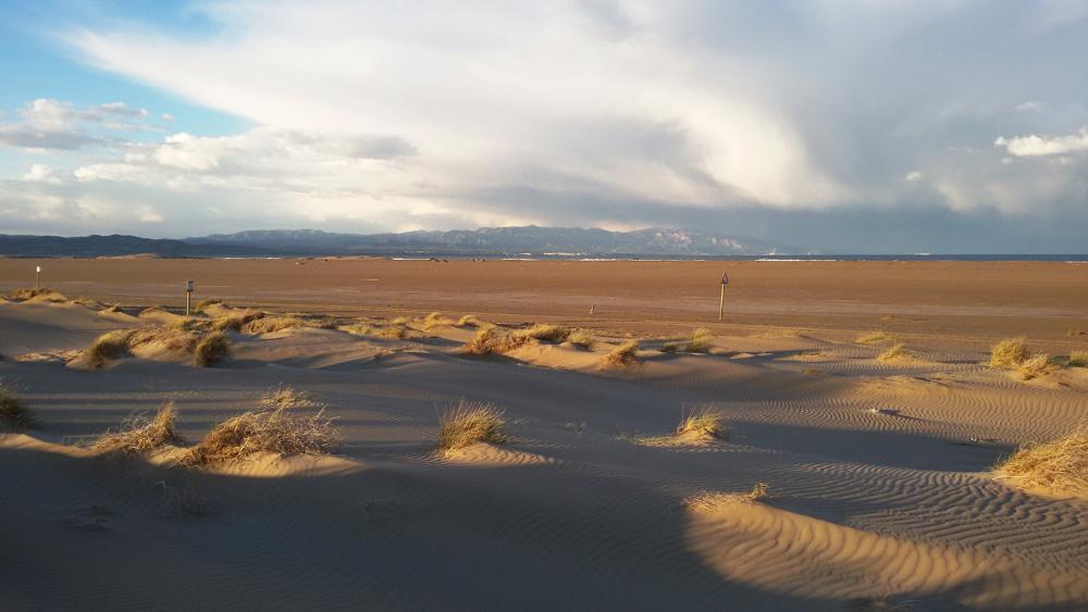 8.-Desert-Català./Rita Ballbona