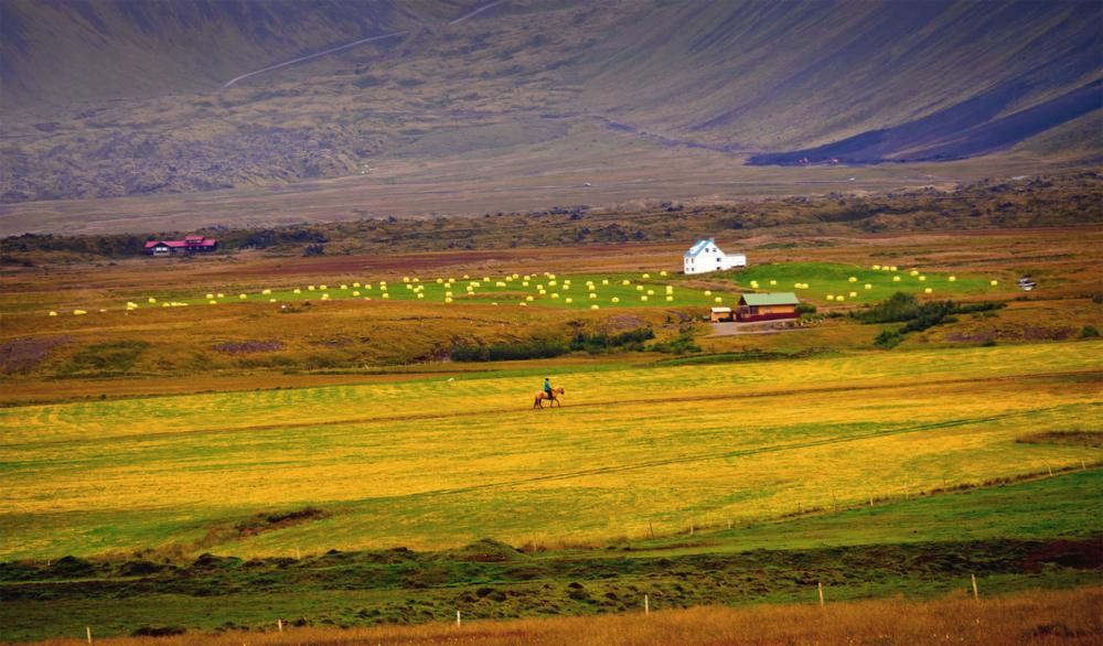10.-Plana agricola/Margarita Bertran